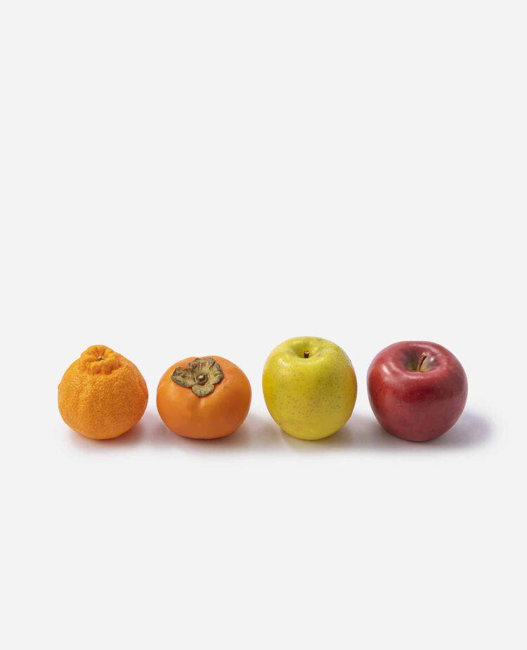 フルーツソムリエが選んだ冬の果物詰め合わせ 6点入 南国フルーツ