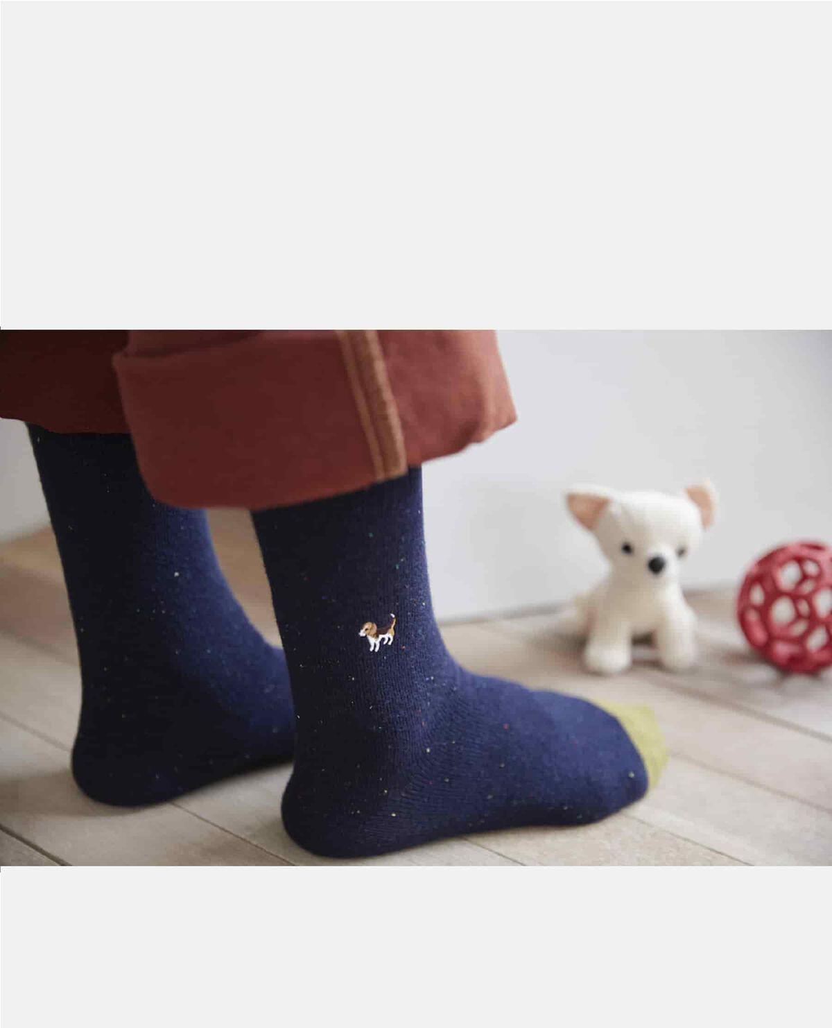 靴下 ビーグル 犬
