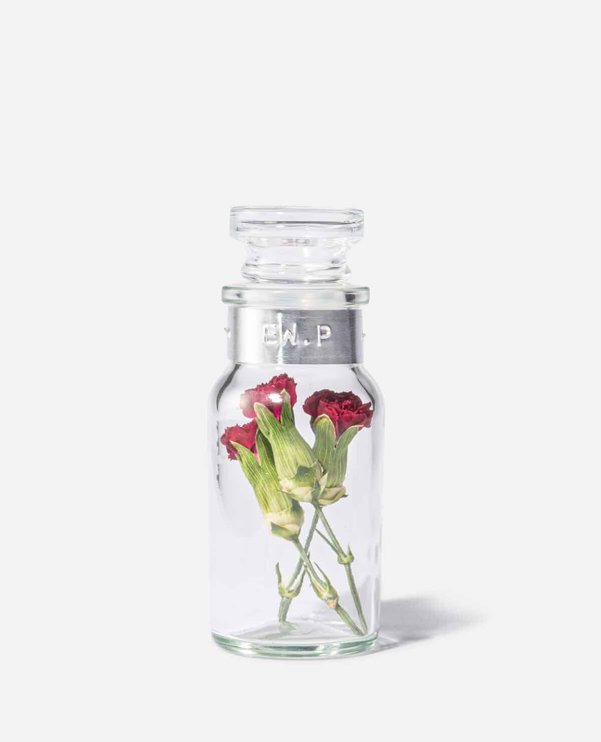 Flower Language mini bottle ボトルフラワー カーネーション(エデンワークス)