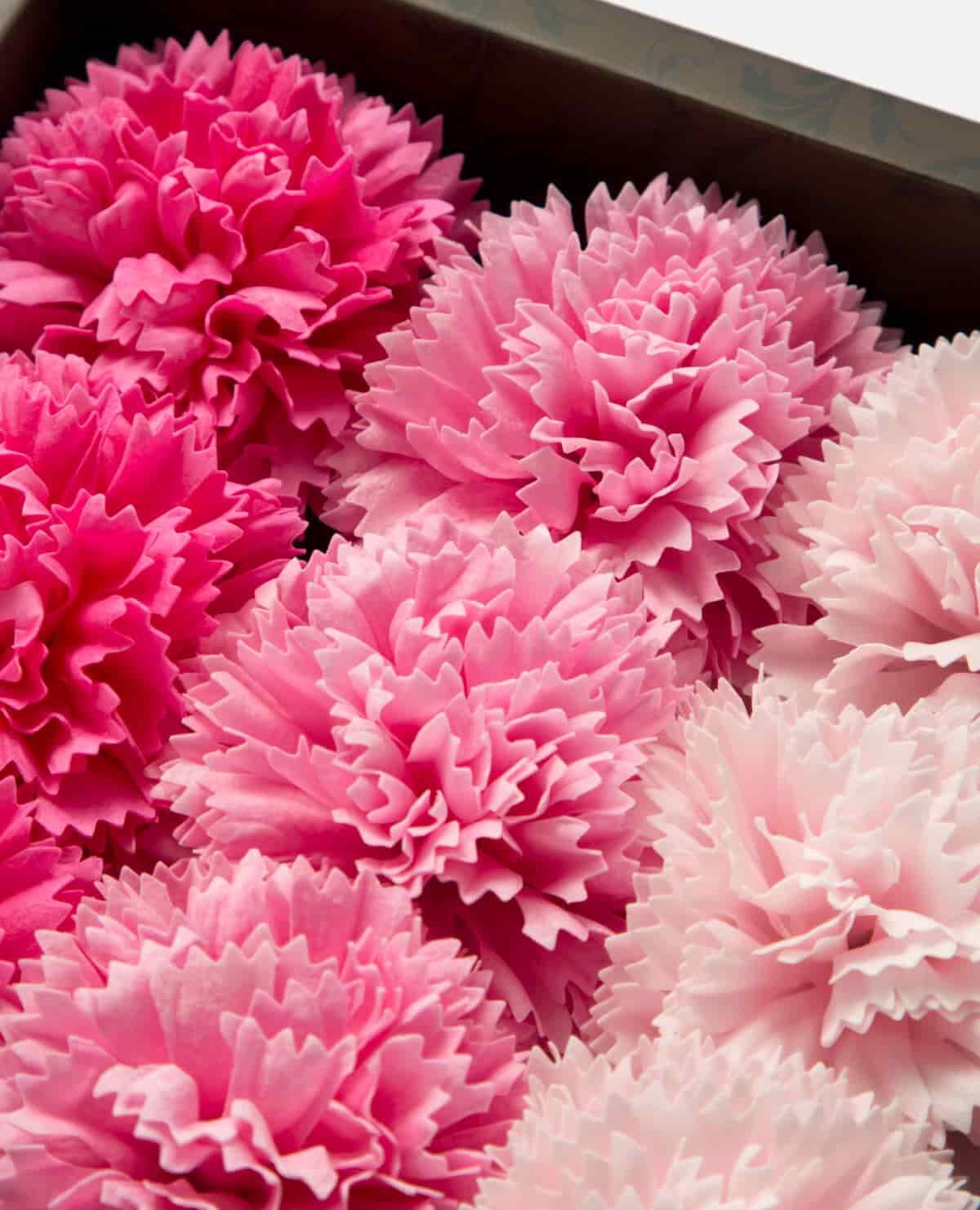 花 入浴剤 カーネーション フレグランス ピンク