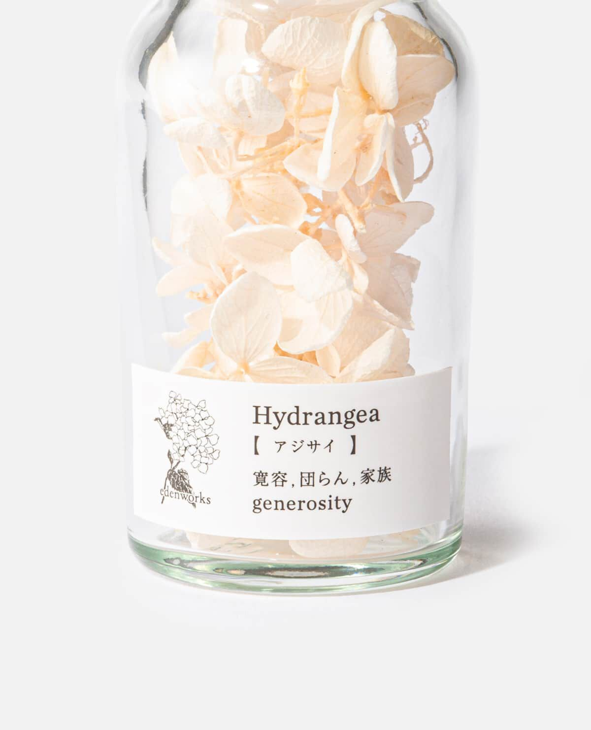 Flower Language mini bottle ボトルフラワー 紫陽花(エデンワークス)