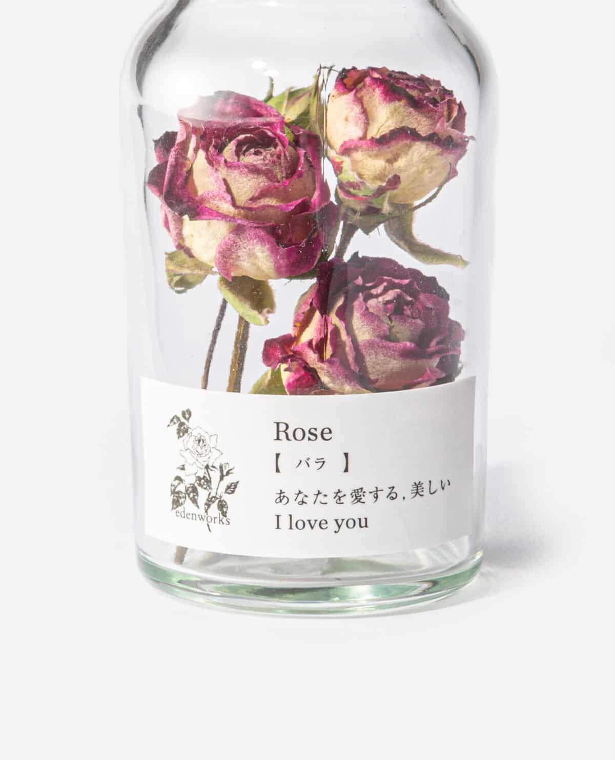 Flower Language mini bottle ボトルフラワー バラ(エデンワークス)