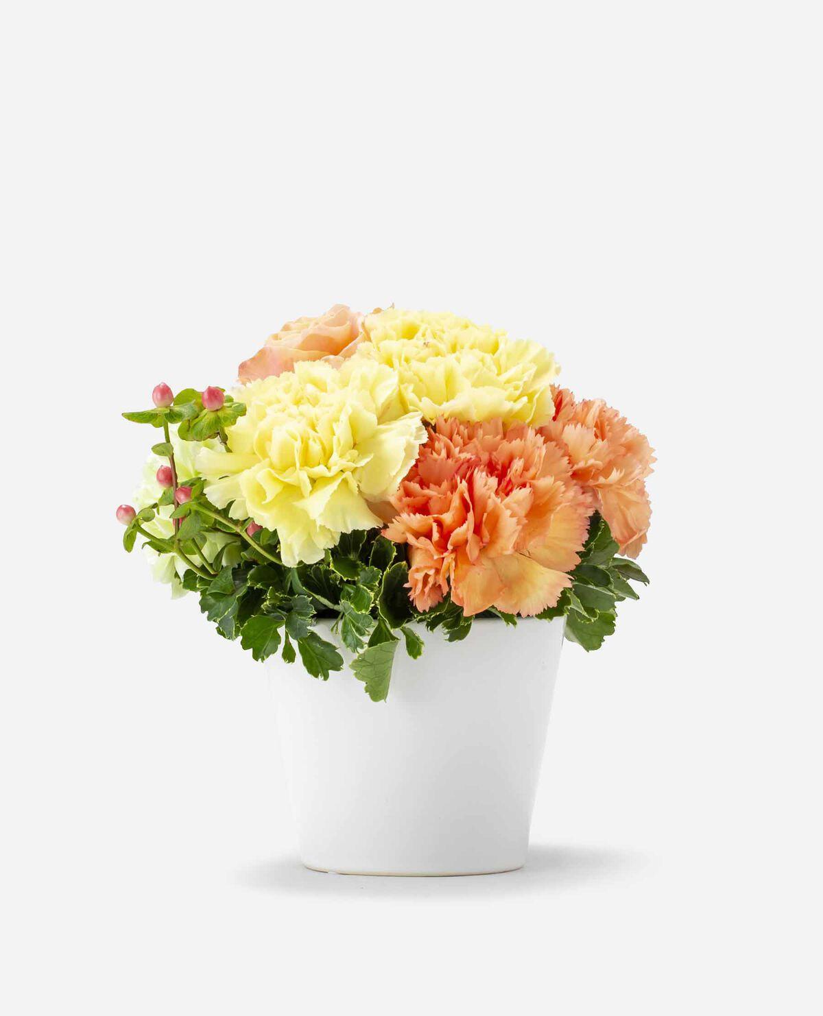 【5/6~9お届け予定】ムードマークオリジナル カーネーションのフラワーアレンジメント 黄色・オレンジ(母の日)