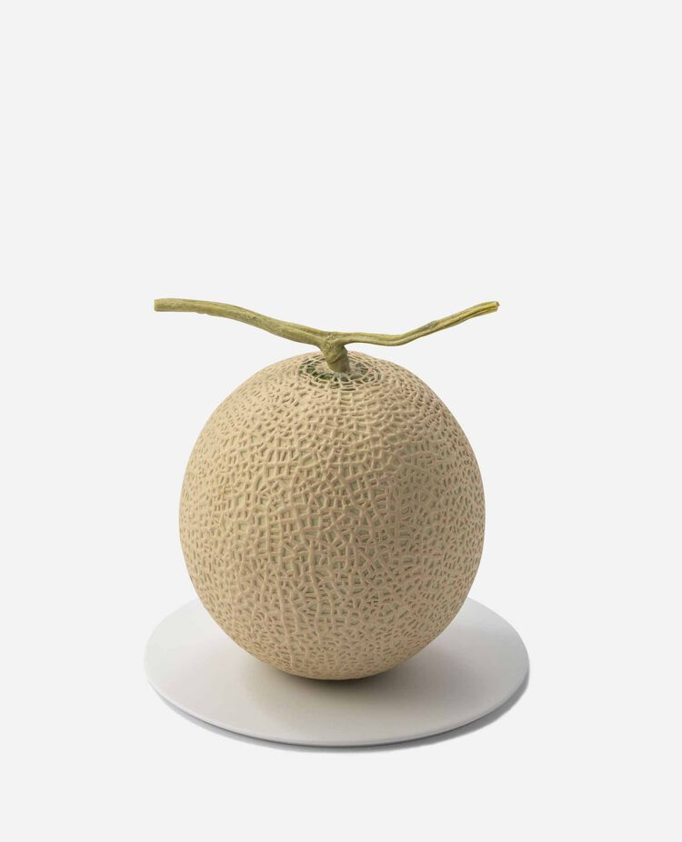 メロンアドバイザーが選んだ静岡マスクメロン 南国フルーツ