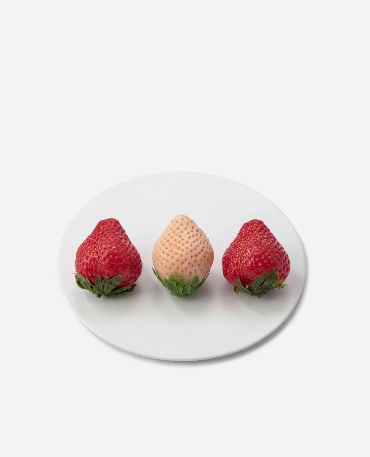 紅白いちご 12粒入 南国フルーツ