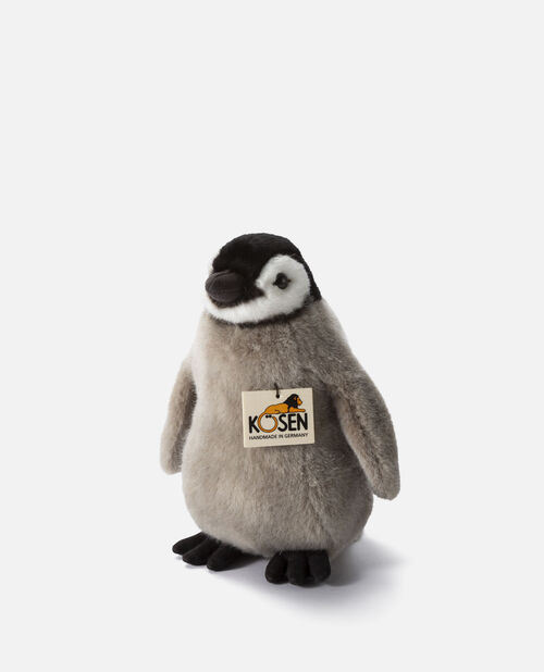 皇帝ペンギンの子