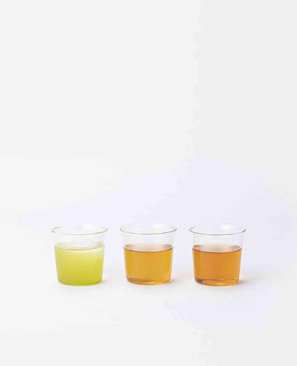 茶と今日。味わい3種セット